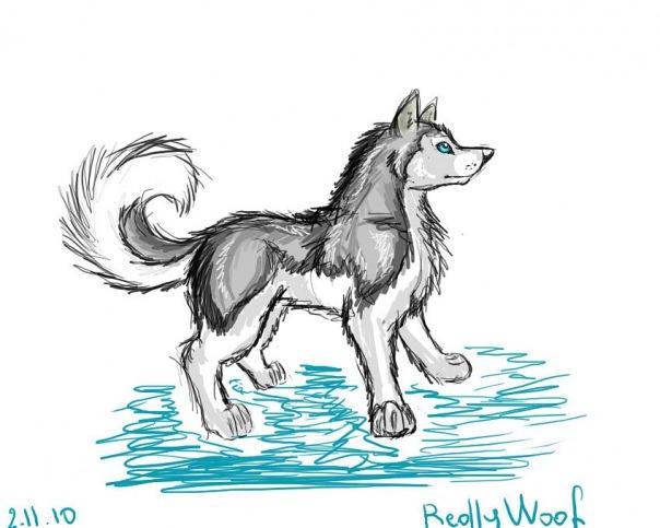 как рисовать собаку аниме: